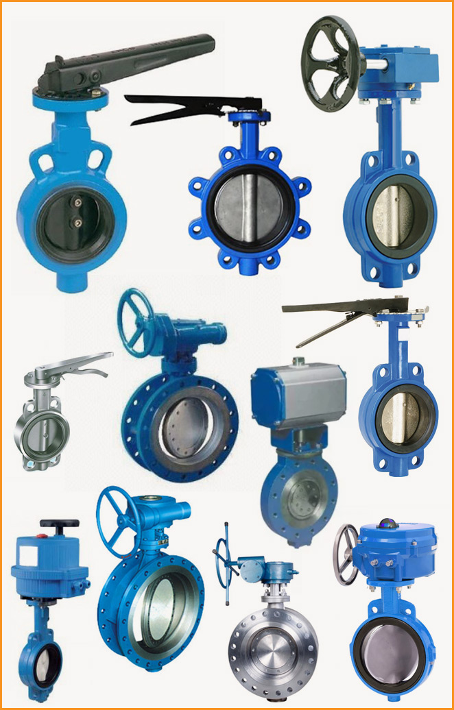 Duplex Stainless Steel Butterfly Valve Request Demo