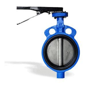 butterfly valve in ahmedabad
