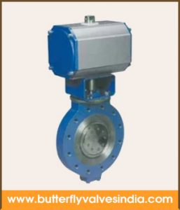 double offset valve supplier in bangalor