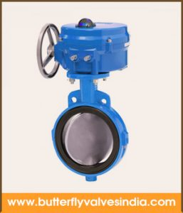 epdm lined butterfly valve manufacturer in chennai
