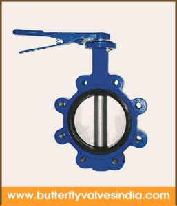 lug butterfly valves supplier