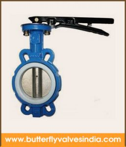teflon ptfe lined butterfly valve supplier in delhi