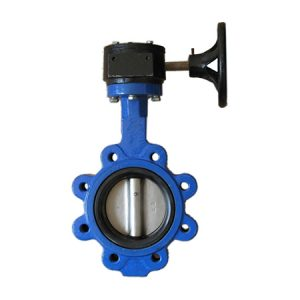 Butterfly Valve Central Disc, butterfly valve central disc manufacturer india
