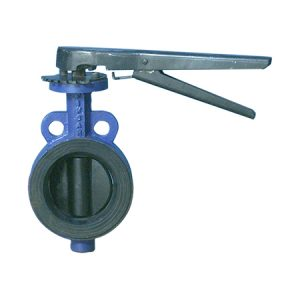 Butterfly Valve Central Disc manufacturer, supplier and exporter in India
